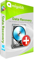 Amigabit Data Recovery Promo Deal